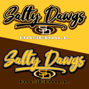 Baseball Sweatshirt - Graphics